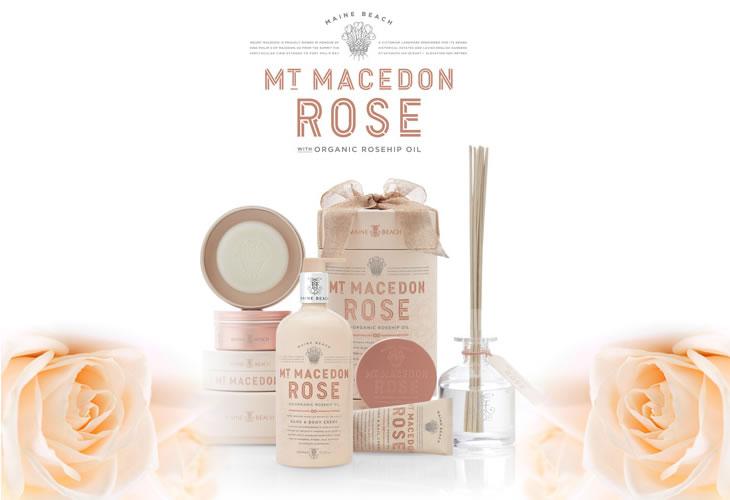 MAINE BEACHシリーズにMT MACEDON ROSE マウント マセドン ローズ